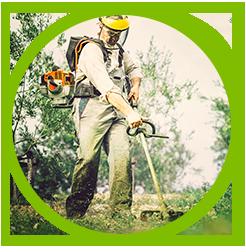 Espace vert et jardinage