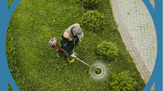 Entretien espace vert et jardinage Réagir Services